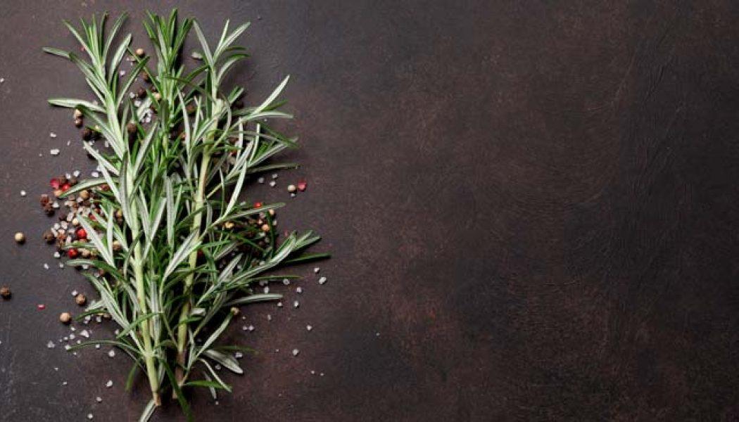 7 plante esențiale pentru o frumusețe naturală